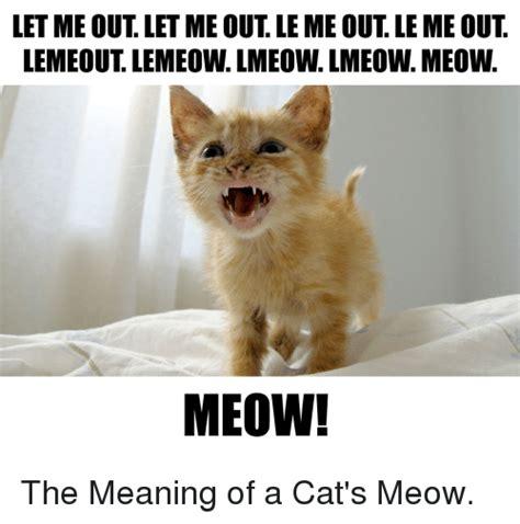 The Me Me Me S - letme out letme out le me out le me out lemeout lemeow