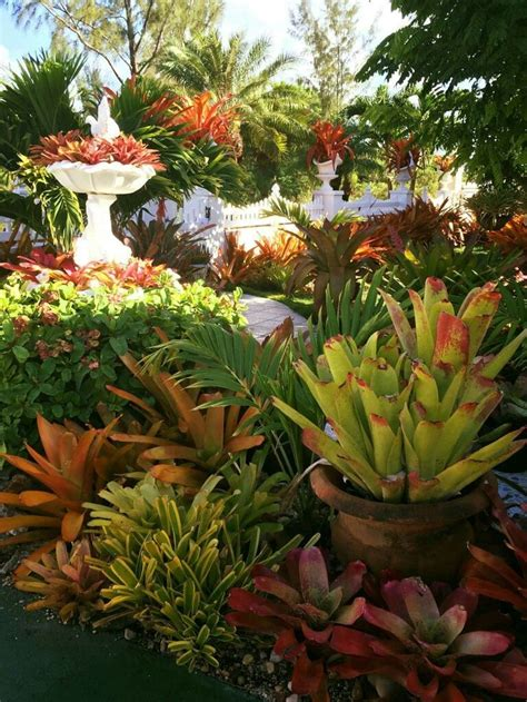 Tropical Gardening Ideas 2658 Best Images About Tropical Touch On Bali