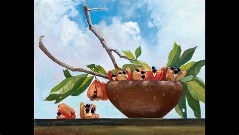biography of jamaican artist judy macmillan 14 best images about png trees palm on pinterest trees