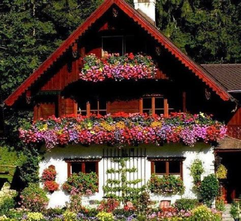 Pictures Of Beautiful Gardens For Small Homes by Chalet Suisse La Beaut 233 Simple Du Bois