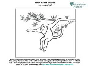 black howler monkey coloring page animals town animals