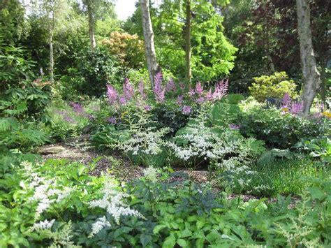 Bog Garden by Hoylake District Gardening Society