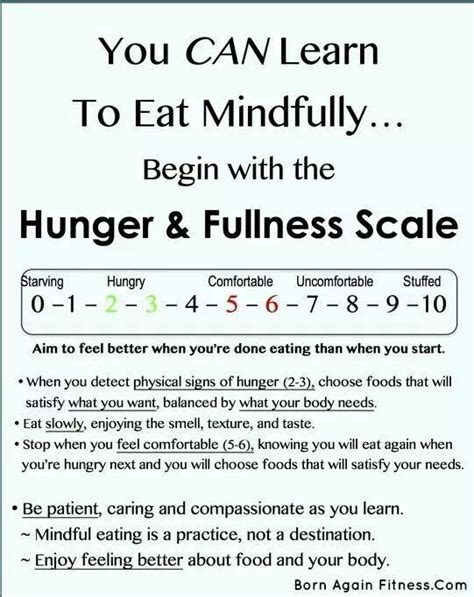 Health The Hunger Scale by 49 Best Hunger Fullness Images On Intuitive