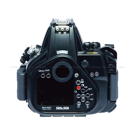 Canon 500d sea sea rdx 500d underwater housing for canon eos 500d t1i 450d xsi backscatter
