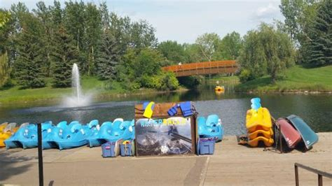 paddle boat rentals calgary paddle boat rental picture of bower ponds red deer
