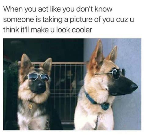 Memes That Will Make You Laugh - amusing memes that will make you laugh until you can t