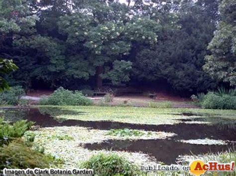Clark Botanical Garden Achus Gt Clark Botanic Garden