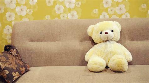wallpaper boneka coklat gambar hijau coklat kuning sofa bahan bantal