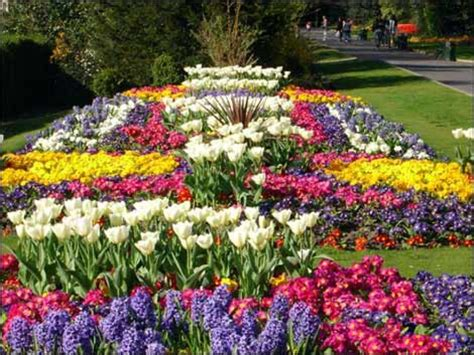 Landscape Flowers Flower Landscaping Pictures And Ideas