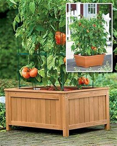 Gardeners Supply Tomato Success Kit S Ultra High Boot Gardener S Supply Store