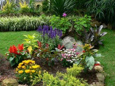 imagenes de jardines flores flores para jardines peque 241 os