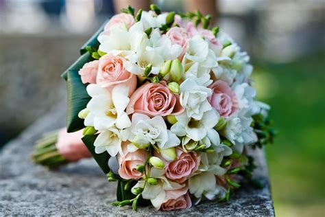 wholesale wedding flowers whole blossoms