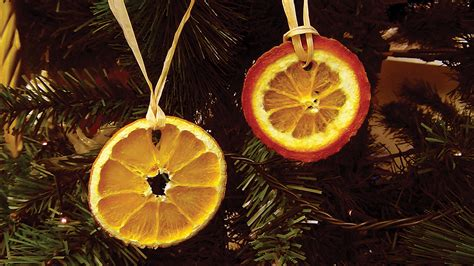 hand made dried orange tree decorations
