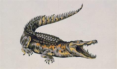 Lacoste Crocodile the story of the crocodile lacoste