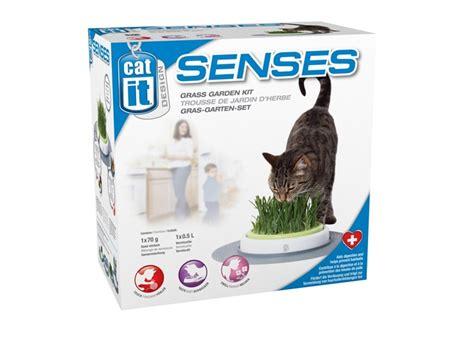 Cat It Senses 4 50755 catit design senses grass garden kit