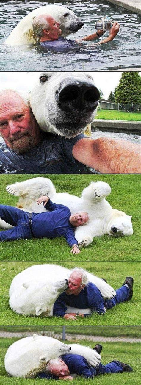 hombres osos facebook la relaci 243 n de un hombre con un oso polar schnauzi com