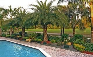 florida landscape design eileen g designs