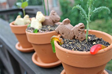 Planters Recipes by Quot Dirt Quot Cake Flower Pots Recipe I Can Cook That I Can