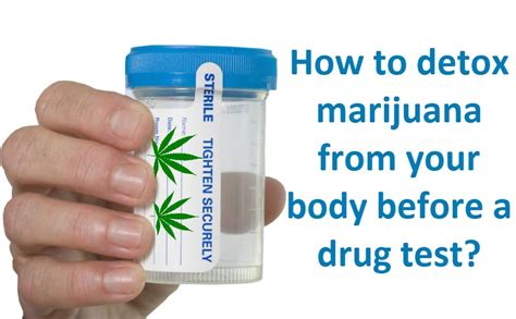 How To Detox Your From Marijuana by How To Detox Cannabis From Your Before A Test