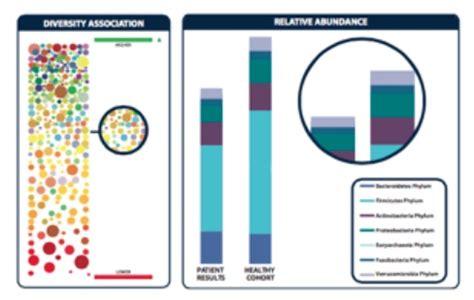 Gi Effects Stool Test by Gi Effects Stool Profile Integrative Wellness