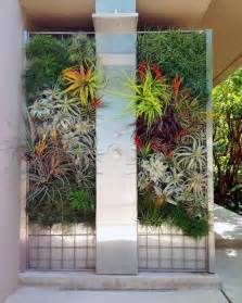 Air Plant Vertical Garden Photos Hgtv