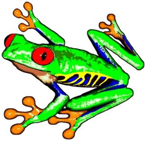 poison dart frog clip art clipart panda free clipart