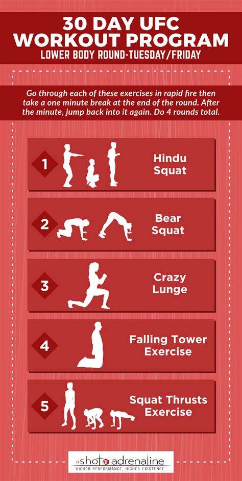squat workout program eoua