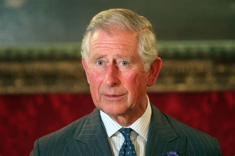 prince charles je suis charles daily squib