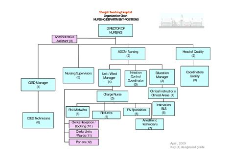 hospital organizational chart 7 best images of hospital departments organizational chart