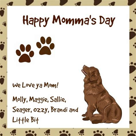 do puppies miss their mothers miss molly s canine gift giving guide for s day miss molly says