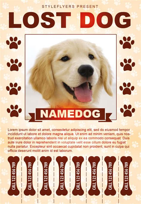 templates for lost pet flyers lost dog free flyer template download for photoshop