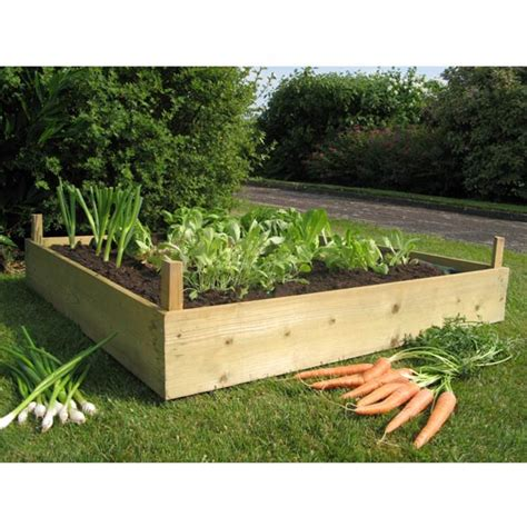 best wood for raised beds wood for raised beds a practical way of gardening homesfeed