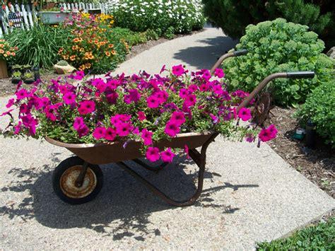 Wheelbarrow Garden Ideas 25 Wheelbarrow Planter Ideas For Your Garden Garden Club