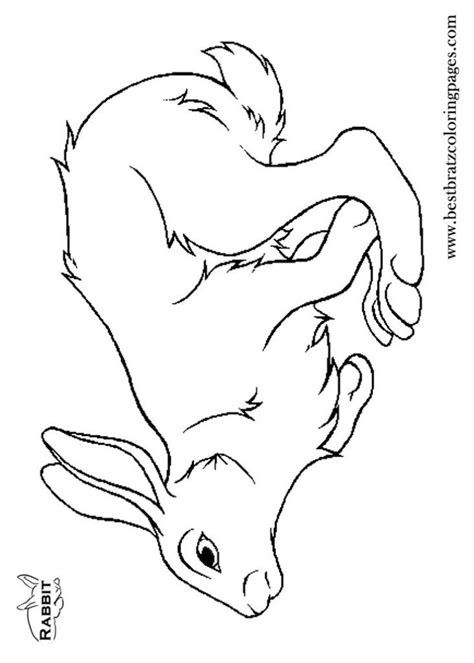 dolphin coloring page pdf coloring pages dolphins free coloring pages for kids