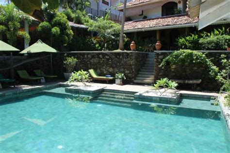 spice house pool photo de the spice house mirissa mirissa tripadvisor