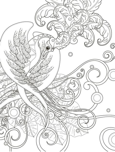 coloring pages of birds for adults 20 gorgeous free printable adult coloring pages page 15