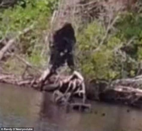 Bigfoot Search Survivorman Bigfoot Search Bigfoot