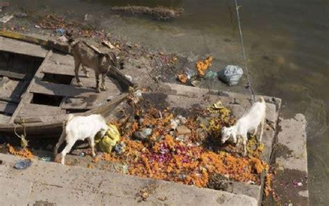 Река ганг в индии фото