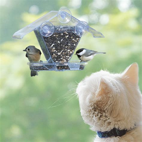 Bird Feeder Suction To Window suction cup window bird house plans house plans
