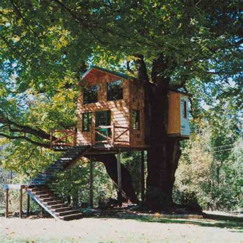Livable Tree House Plans Treehouse Living 4 Custom Eco Friendly Options Nature And Environment Earth News