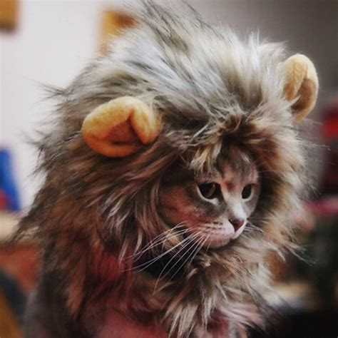 Dress Kucing Black Cat Pet Cat Mane Wig Costume Stuffed Hat Fancy Dress