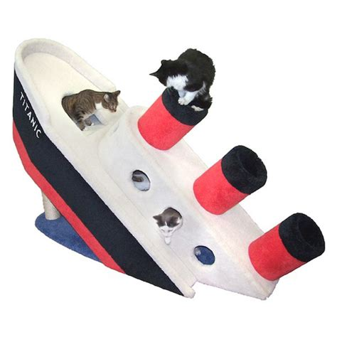 gravy boat metaphor the 2 000 sinking titanic cat condo