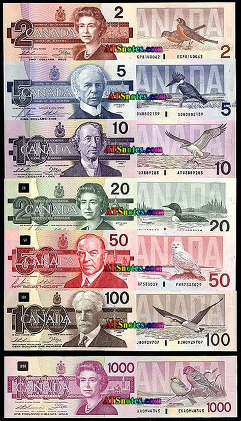 How To Make Currency Paper - best 25 canadian dollar ideas on