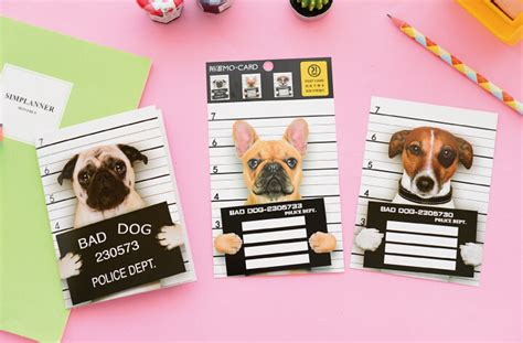 Aliexpress Gift Card - novelty naughty prisoner dog scratch card postcard greeting gift card christmas