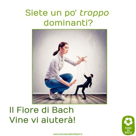 fiori di bach emergency remedy 89 best fiori di bach images on remedies bach