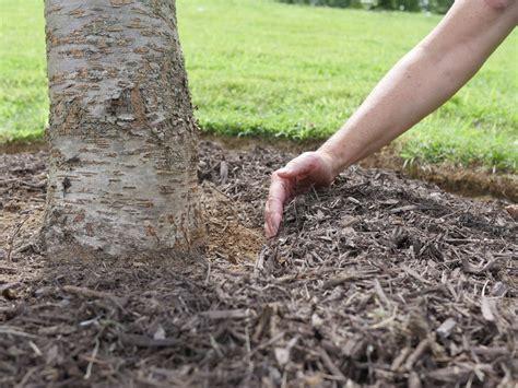 top 28 best way to lay mulch effective mulching youtube top 28 best way to lay mulch