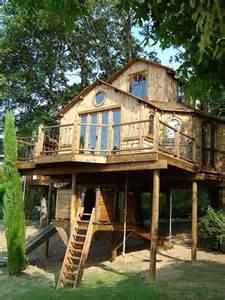 Pinterest Treehouse - treehouse scotland tree houses pinterest