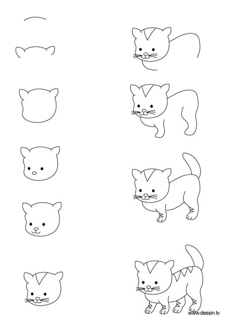 cat step step how to draw a cat step by kitten litle pups