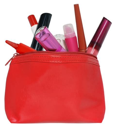 Tips From A Regular Makeup Bag by Makeup Bag Cleanup Tips