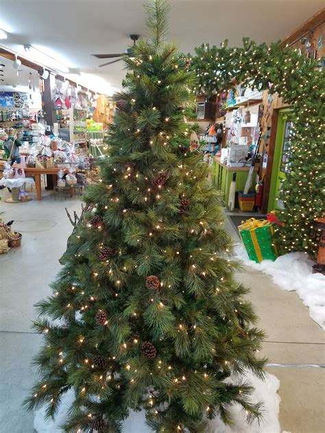 christmas tree farms allentown pa buying a real tree is a choice sunnyside nursery green rabbit nursery